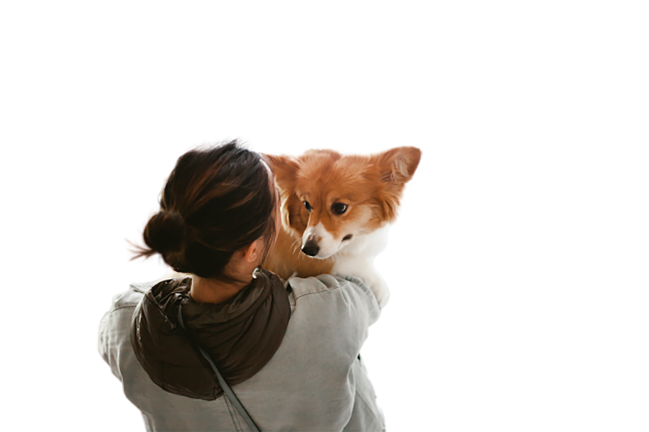 Girl with her pet dog transparent background PNG