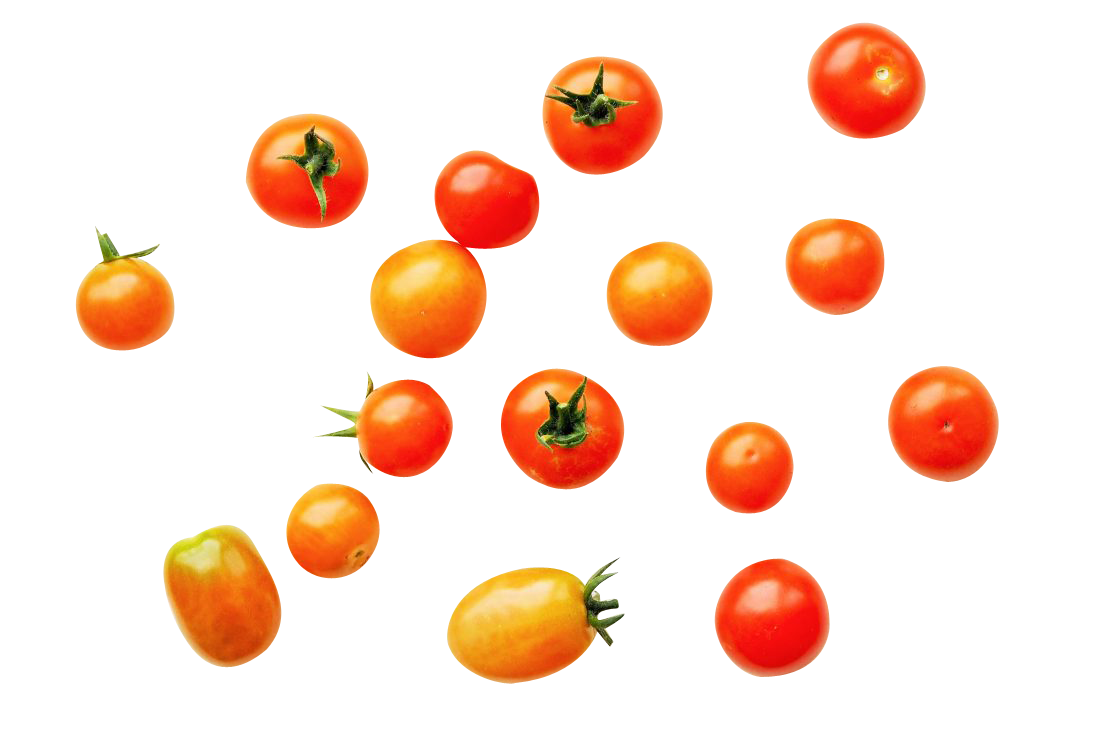 Tomatoes Background Transparent Background PNG