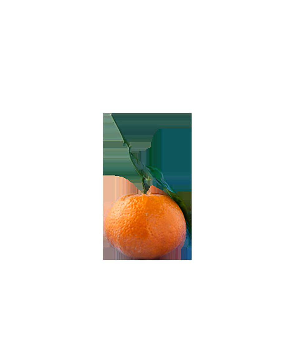 Orange with a leaf transparent background PNG