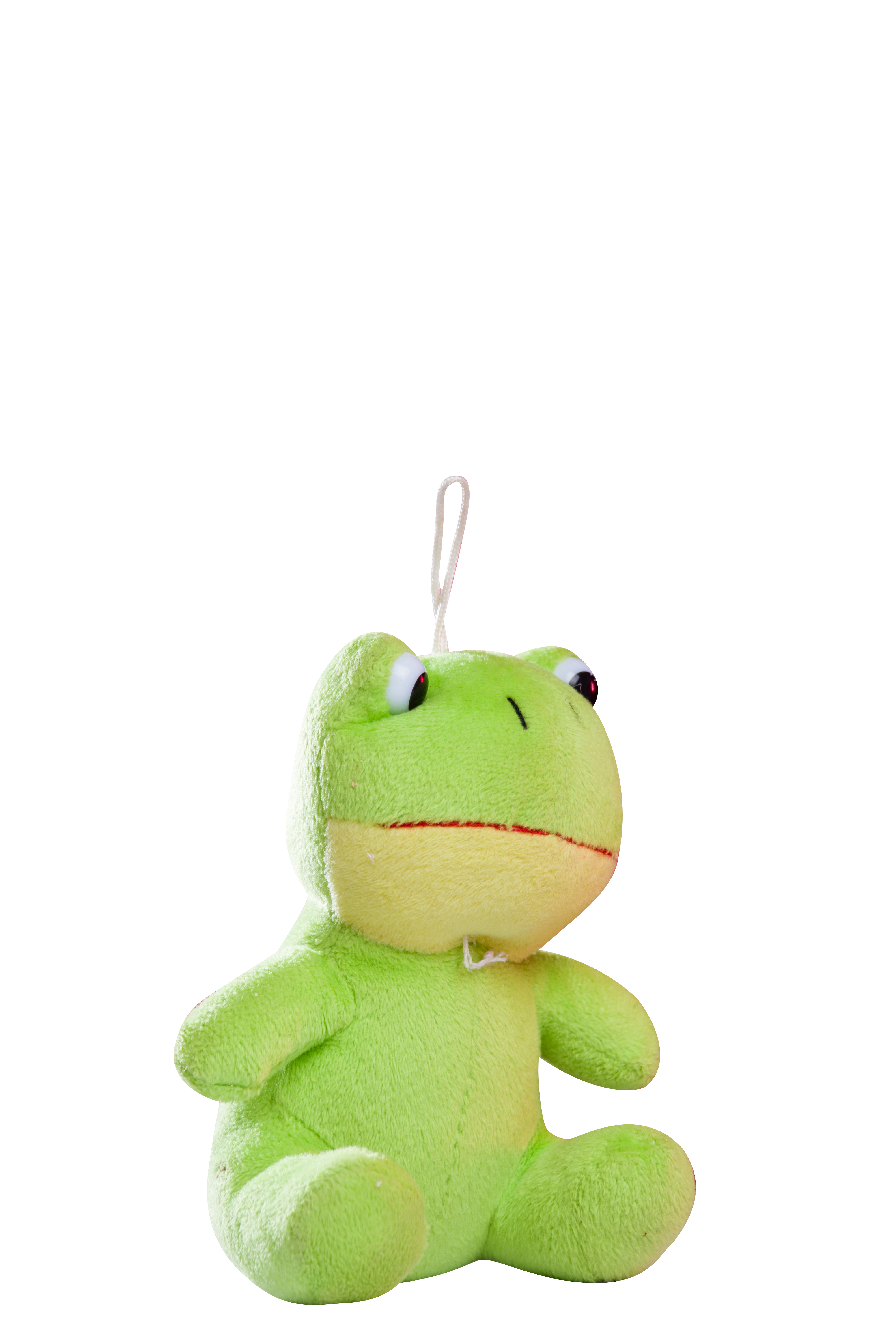 Frog Plush Toy Transparent Background PNG