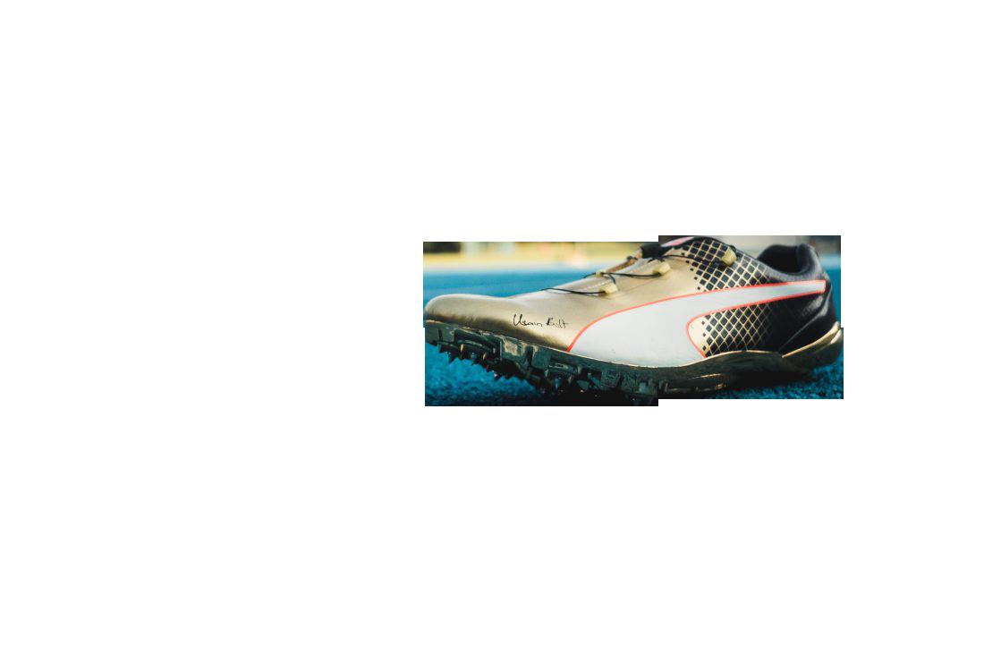 Sport Shoes Transparent Background PNG