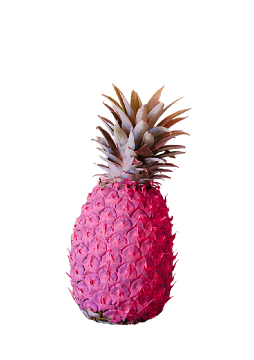 Pink Pineapple with long crown transparent background PNG