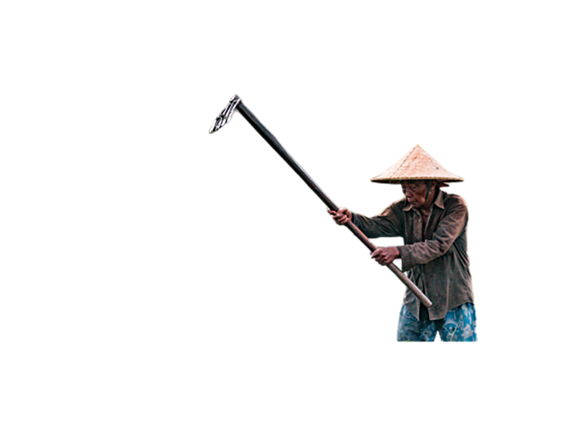 An old farmer transparent background PNG