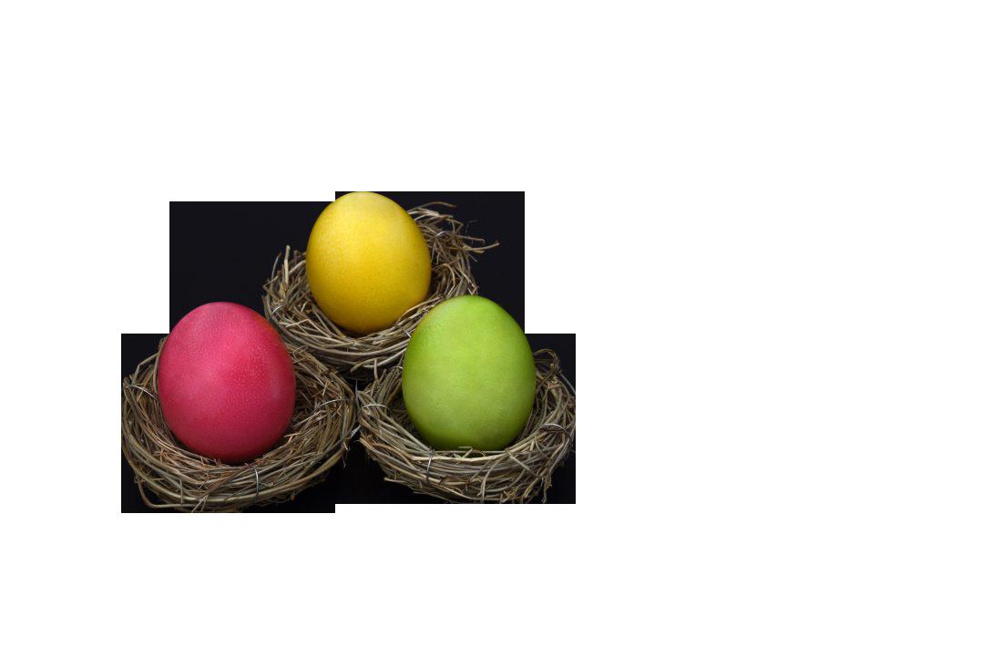 Easter Egg In Nest Transparent Background PNG